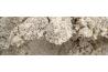 Chaux naturelle batardée au ciment NHL5Z en sac de 25kg