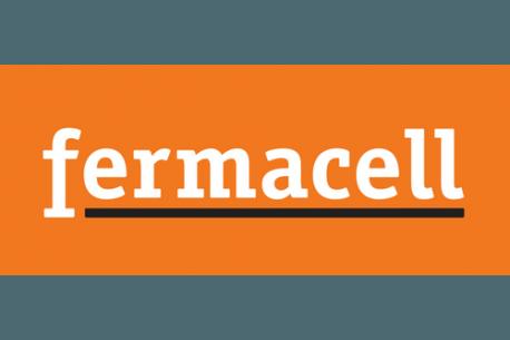 Granules d 39 galisation fermacell alsabrico - Granule d egalisation fermacell ...